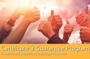 Government Subsidised Training